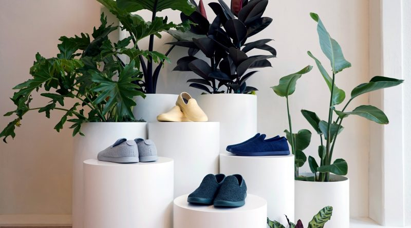 Sustainable shoe maker Allbirds files for IPO and reveals continued losses