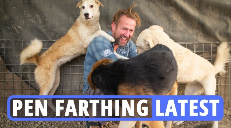 Taliban stabbed & MACHINE GUNNED my dogs on way to UK flight, Pen Fathing says
