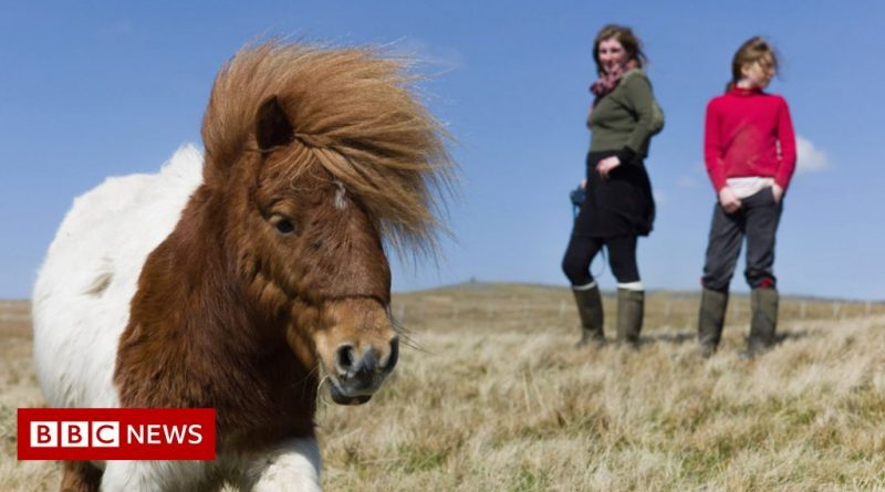 Why Scotland and Yorkshire are TV's top UK destinations