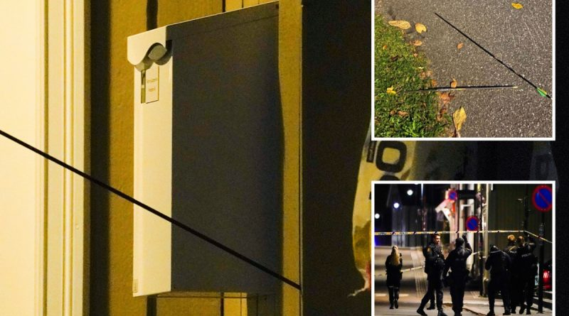 Five dead and more hurt including cop in bow & arrow attack as suspect held