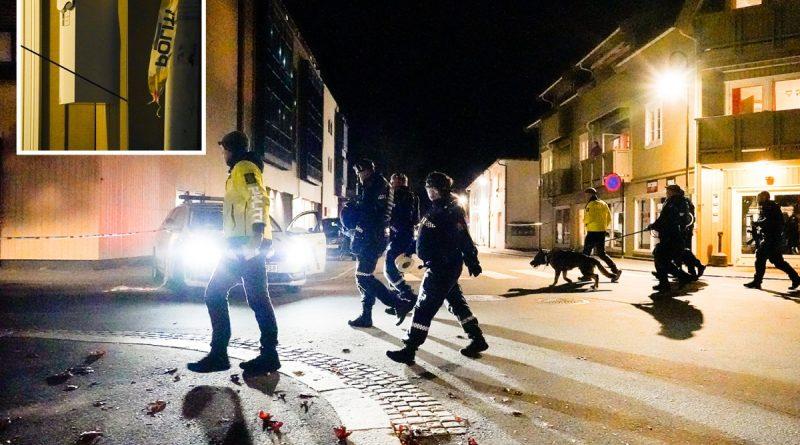 Muslim convert, 30, shoots 5 dead & injures 2 in 30 minute rampage in Norway