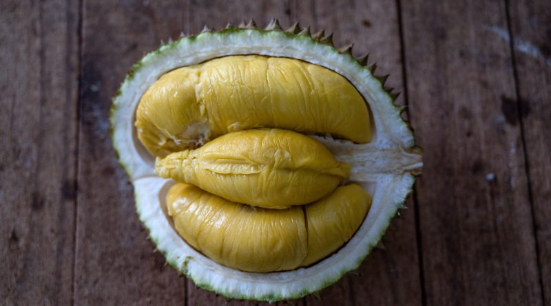 Scientists turn durian waste into bandages — and the internet has questions