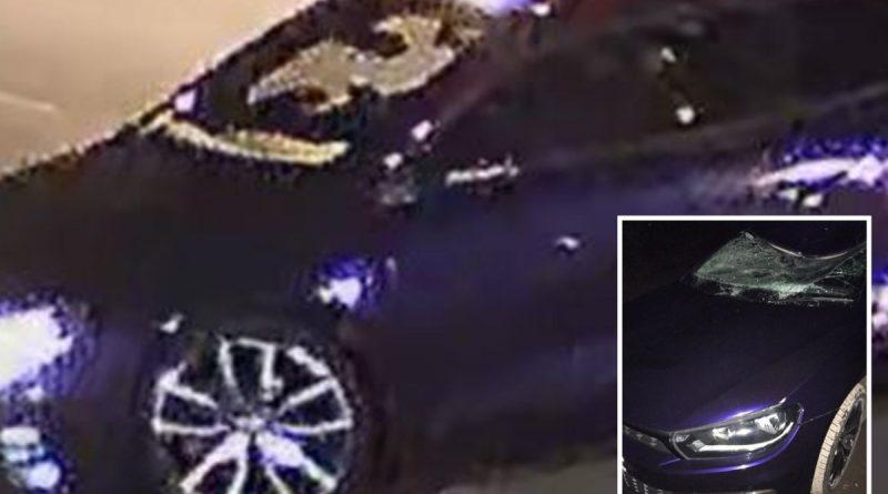 Teen dies after he was hit by 'stolen getaway car' in horror hit-and-run crash